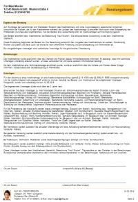 Beispiel eines Beratungsprotokolls - Seite 2